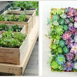 8 little gardening ideas for apartment dwellers